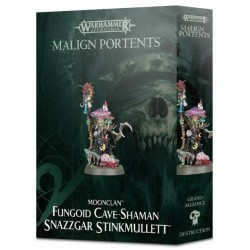 Snazzgar Stinkmullet - Cave Shaman Box Cover