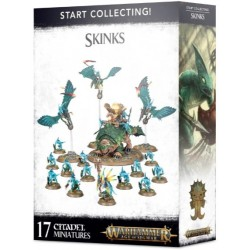 Start Collecting Skinks Box Cover