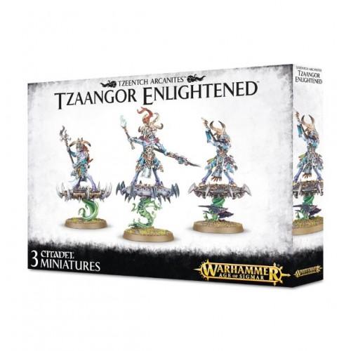 Tzeentch Arcanites Tzaangor Enlightened Box Cover